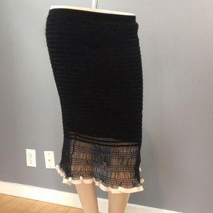 NWT Alexander Wang Skirt Orig $695